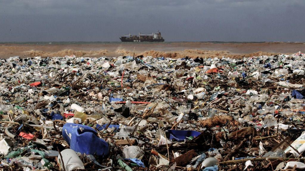 ¿Qué basura hay en el mar?